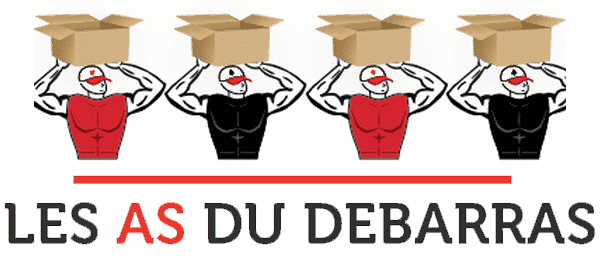 Les As du Débarras 06